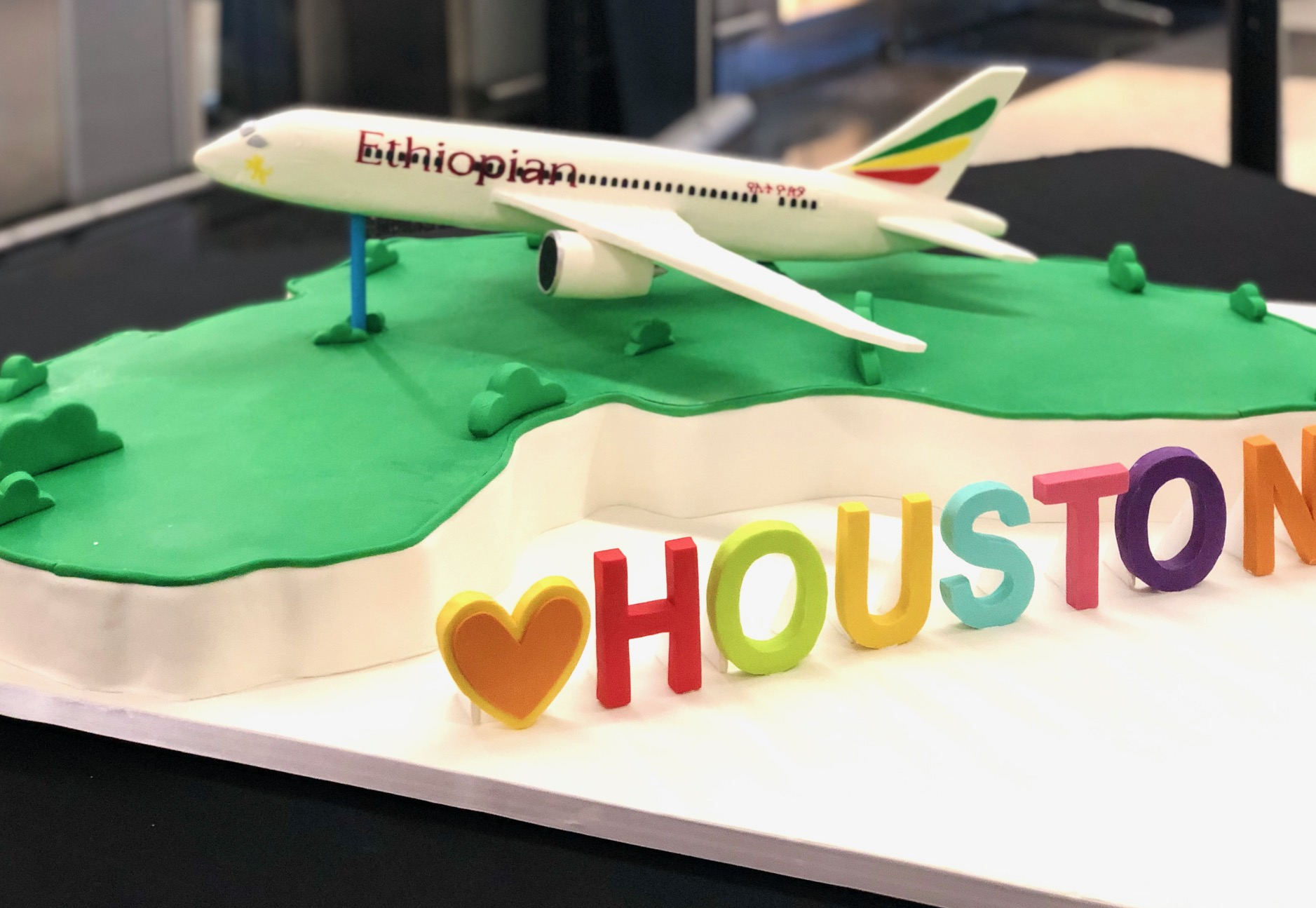 3D Ethiopian Air Jetliner Cake