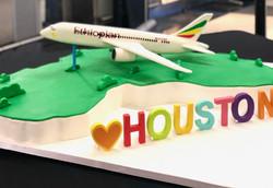 3D Ethiopian Air Jetliner Cake