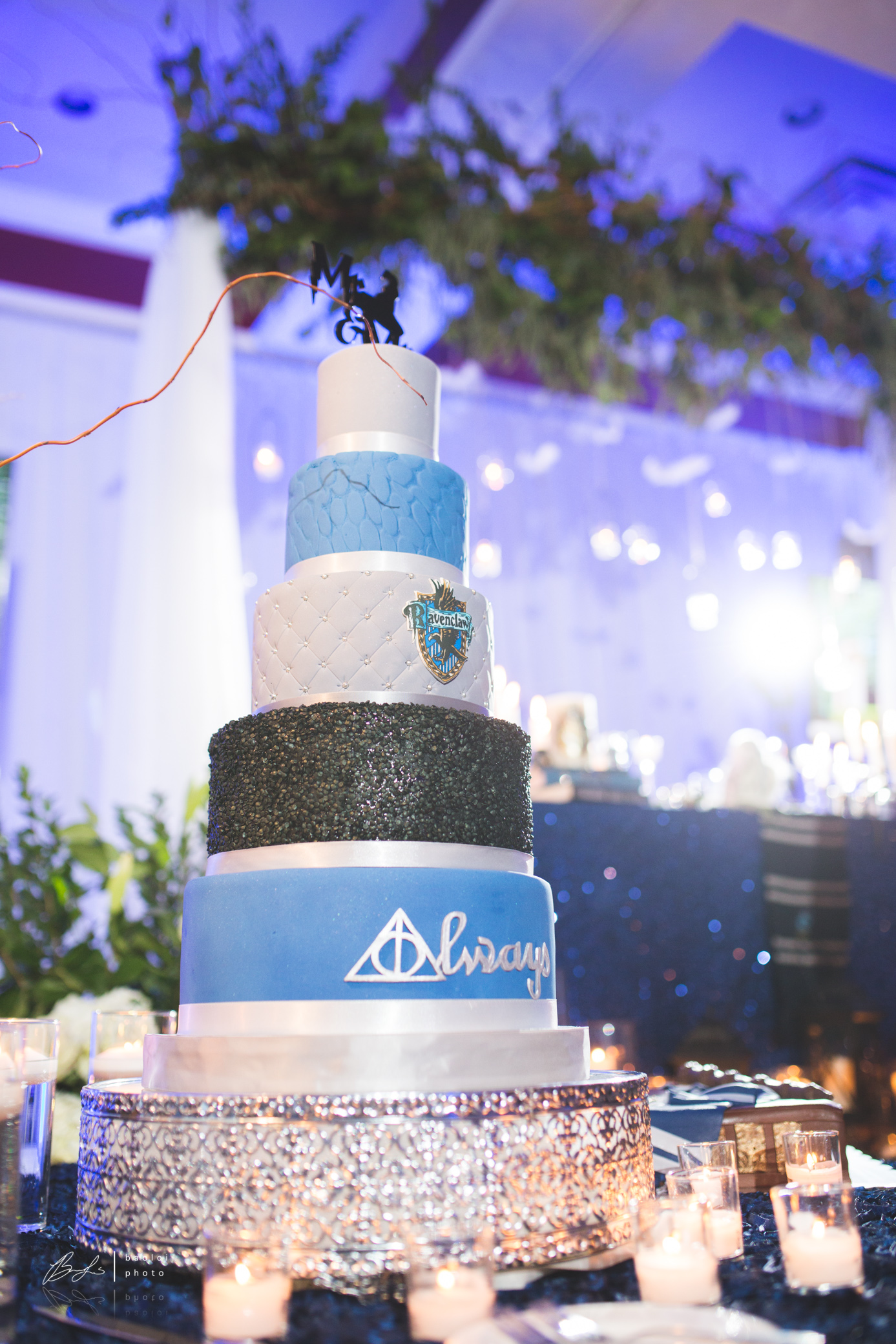 Harry Potter Wedding Cake Design