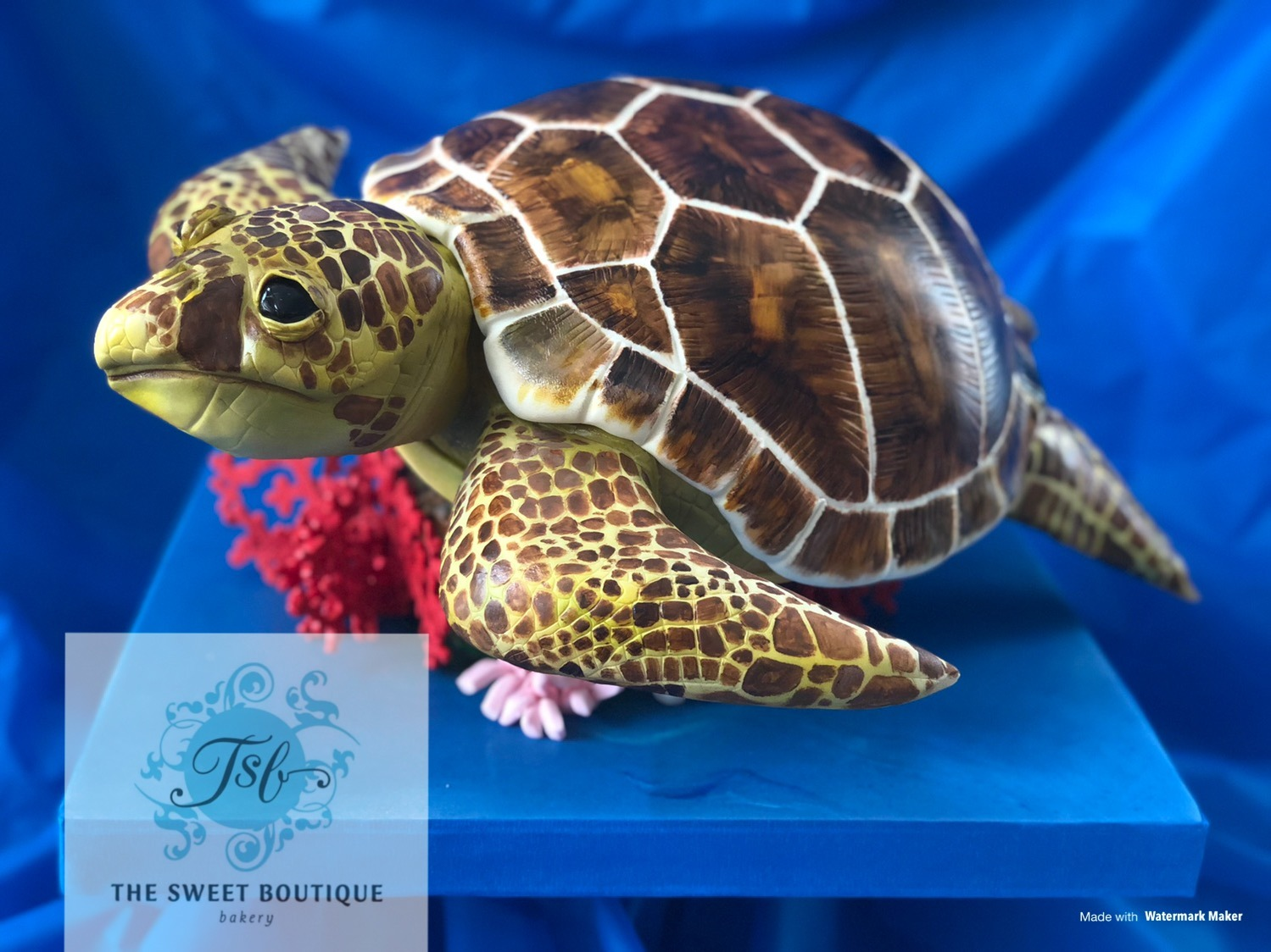 3D Sculpted Sea Turtle Cake