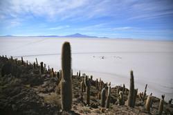 Incahuasi, Uyuni, Bolivia