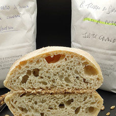 Pane con miscela sperimentale di frumenti teneri