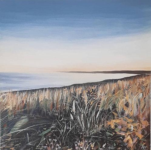 Dusk (Whitsand Bay)