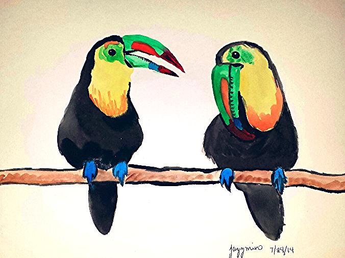 Toucan Conversation