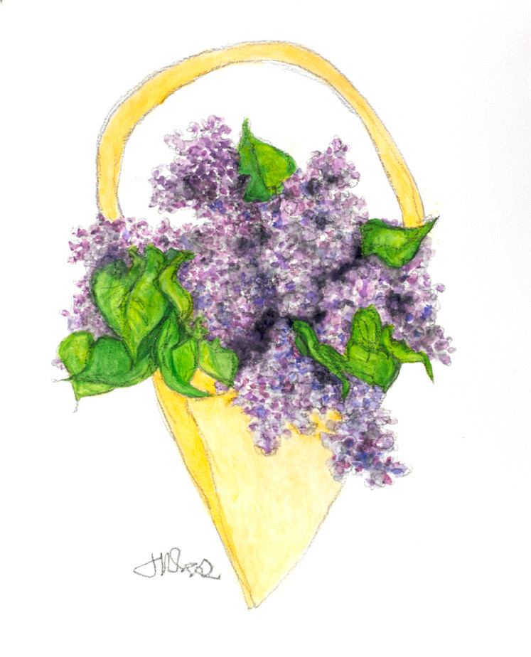 A May Day Baskets of Lilacs! On May Day we would make a basket & fill it with flowers, drop them on a doorstep, ring the doorbell & run!