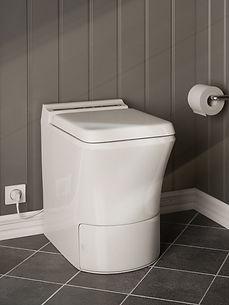 Cinderella Toilets .jpg