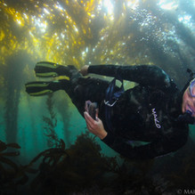 Sutara Nitenson Collecting empty abalone shells in Big Sur, CA