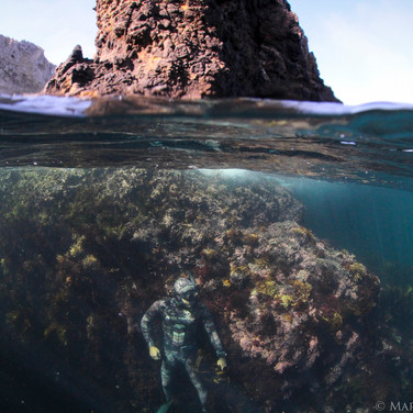 Myself blending in to a Channel Islands reef off the coast of CA.  Photo taken by Sutara Nitenson, edited by myself.