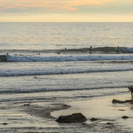 Low Tide at Devs