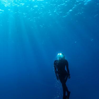 Sutara Nitenson, ascending in Hawaiian waters.