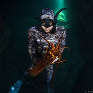 Myself with a nice California Spiny Lobster off the Channel Islands, CA. Photo taken by Sutara Nitenson, edited by myself.