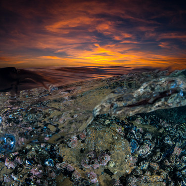 Mussels and Barnacles beneath, Santa Barbara sunset above.
