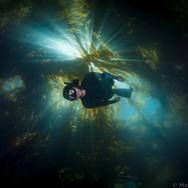 Sutara Nitenson dropping through the kelp in Santa Barbara, CA. Image taken for Amasea/Pharmersea
