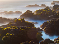 Northern Sonoma Seascapes