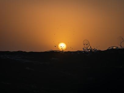 Movement at Dawn