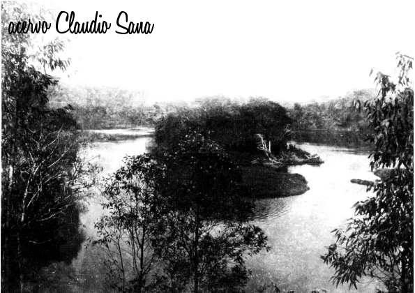 ilha do rio tietê parque das monções.jpg