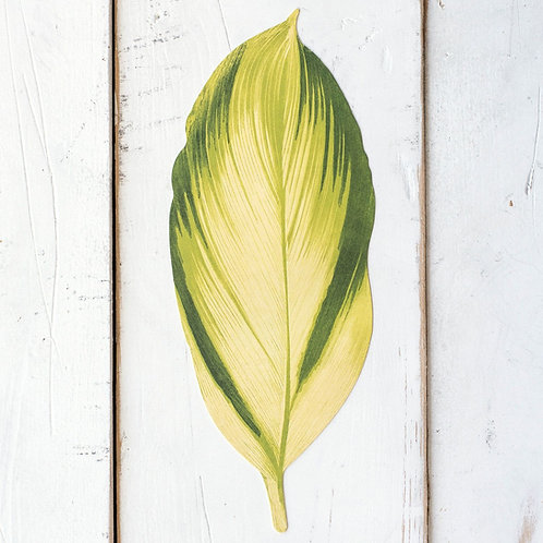 TROPICAL LEAF TABLE ACCENTS