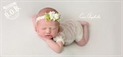 Lowcountry Newborn photographer