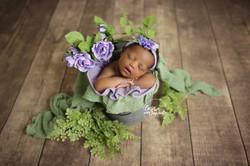 Bluffton hilton head newborn photographer