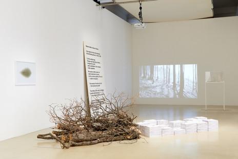 Image by Eva Würdinger, Kunstraum Niederösterreich, 2016
