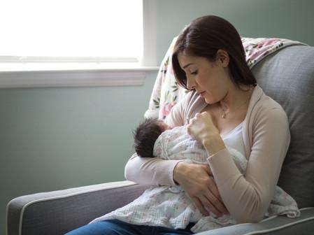 Tampa Newborn Photography Sara Jin