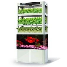 hydroponics5.png