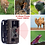 Thumbnail: 동물생태 감시카메라