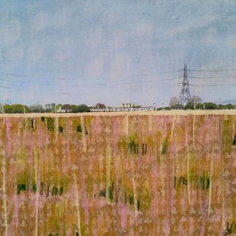 Train Across The Marshes.jpg