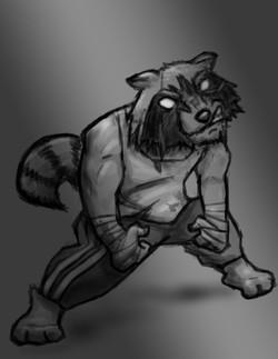 Fight Raccoon