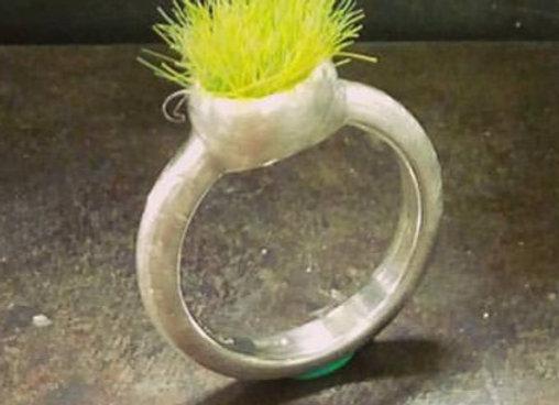 Linea Erba anello