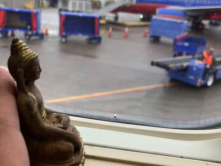 Little Buddha flies again...