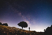 staring at the sky.JPG