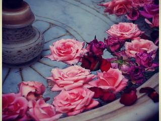 Pool of love...