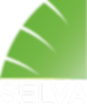 Selva_Logo_General_Corrected_2019_True_G