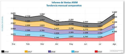 Informe ventas mensuales ANIM