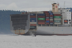 T77B and container ship