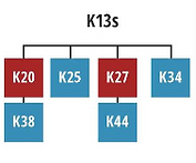 K13s.png
