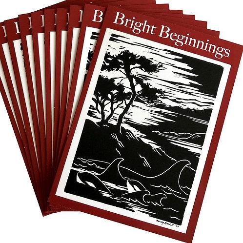 Holiday Cards / Bright Beginnings