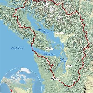Salish Sea Ecosystem.jpg