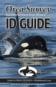 2019 ID Guide cover.jpg