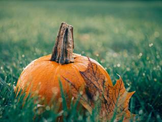 Seasonal marketing: How you can engage customers