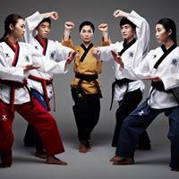 Taekwondo Doboks