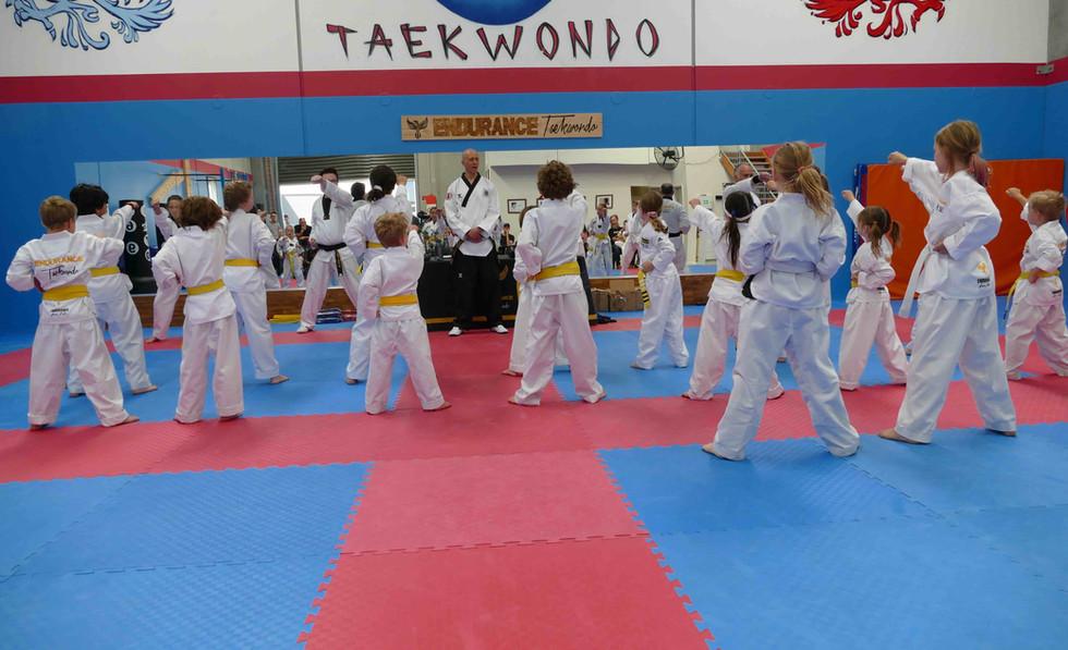 Taekwondo Class Warming Up