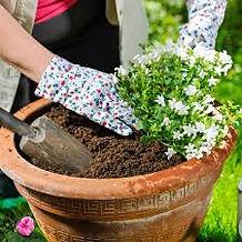 Garden Explorers