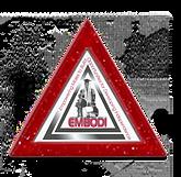 EMBODI Icon.png