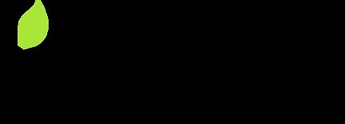 Logo singolo1.png
