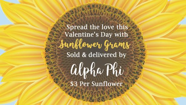 Sunflower Grams for Women's Heart Health!