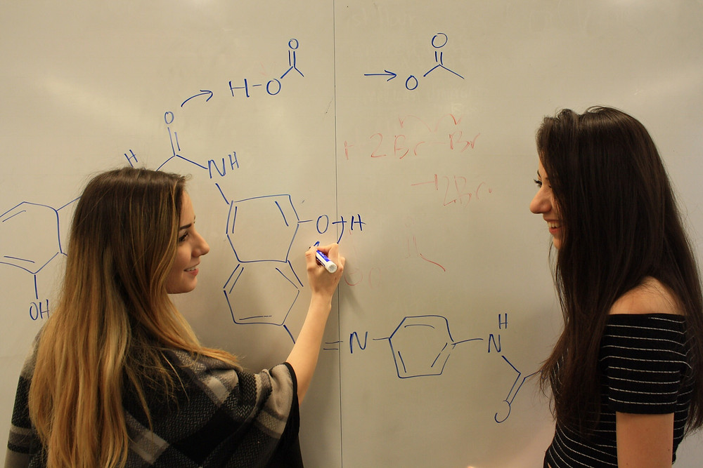 Mané and Naré (Aphi & biological sisters!) working on chemistry