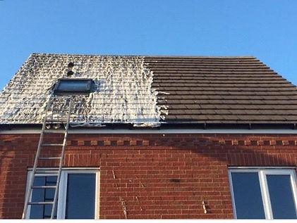 Roof Demossing 2.jpg