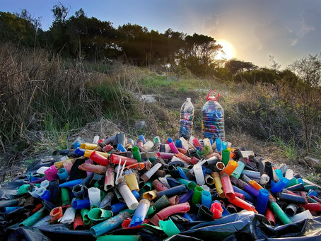 Tackling plastic litter from shotgun ammunition: A Local Perspective